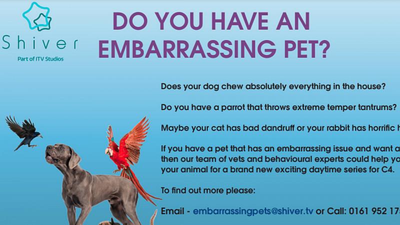 Embarrassing Pets