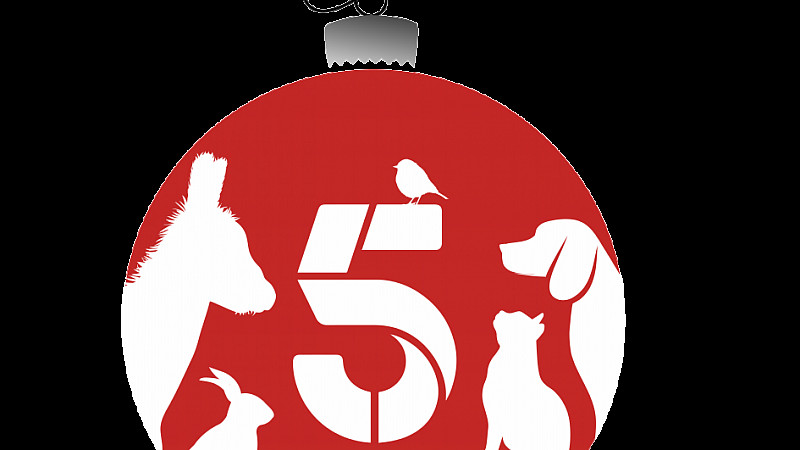 Help the Animals at Christmas