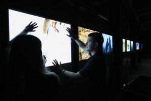 Visitors to the current wildlife photography exhibition