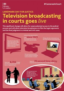 Click for full size info graphic (Ministry of Justice)