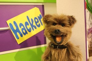 CBBC star Hacker T Dog