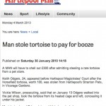 Animals continue to provide rich pickings. Here the Hartlepool Mail goes turtle.
