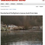 The Sunderland Echo finds a watery tale to tell.