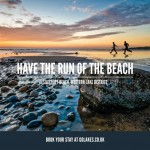 Have the run of the beach