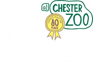 Chester zoo appoints intermarketing agency following for Marketing agency chester