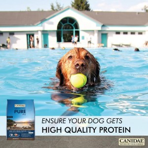 Umpf will be launching Canidae at Crufts this week