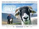 Addicted-to-Sheep-Poster