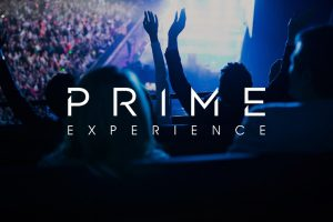 Creative Spark's branding for Prime Experience