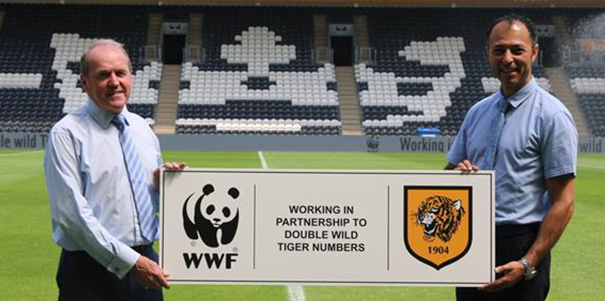 Hull City to rename stand in WWF partnership